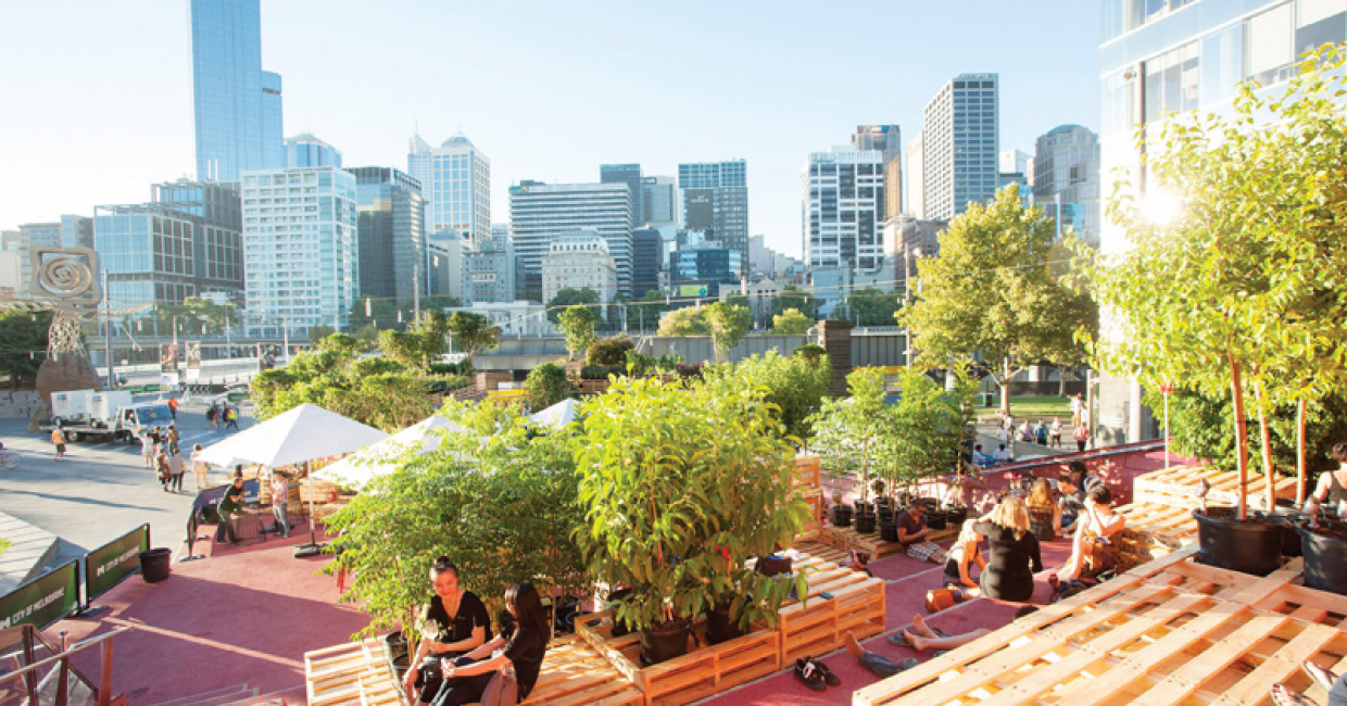 Hassell designed an urban coffee farm for the Melbourne Food and Wine festival. Image © Bonnie Savage