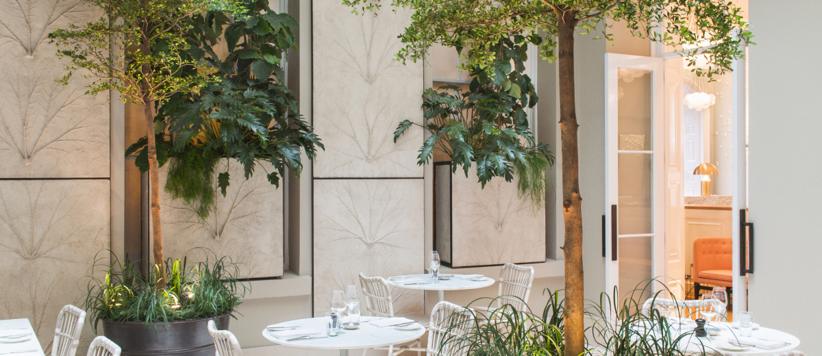 Skye Gyngell announces launch of The Salon at Spring