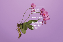 Pantone unveils its Colour of the Year for 2014