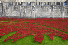 Johnson Tiles proud to be part of poignant Tower of London installation